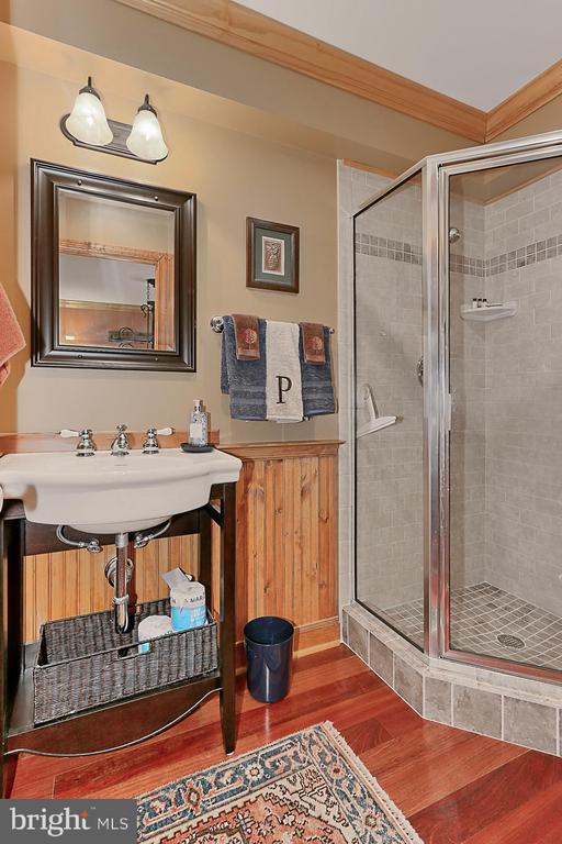 Full Bath on Lower Level - 94 CANTERBURY DR, STAFFORD