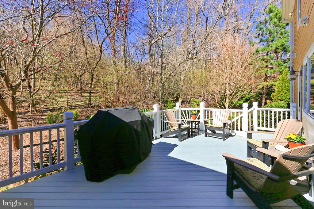 Deck is light and bright - 94 CANTERBURY DR, STAFFORD