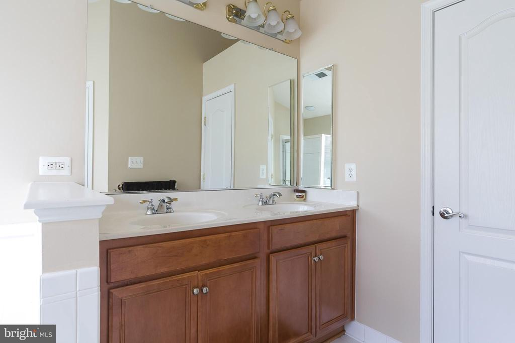 Master bath double vanity - 21965 WINDOVER DR, BROADLANDS
