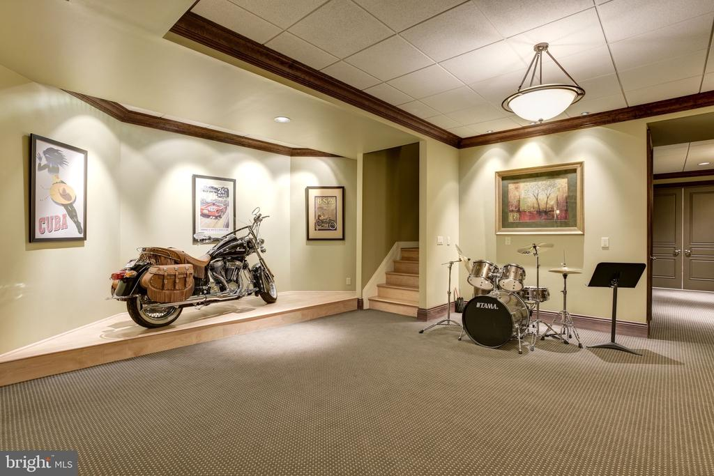 Lower Level Entrance w/ Showcase Stage - 8544 LEISURE HILL DR, BALTIMORE
