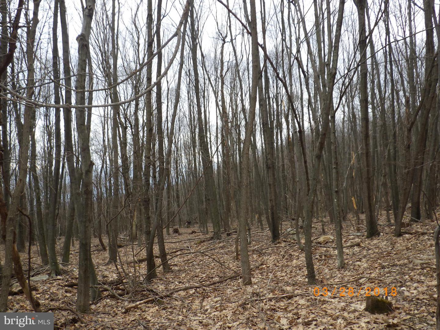 Land for Sale at Crystal Spring, Pennsylvania 15536 United States