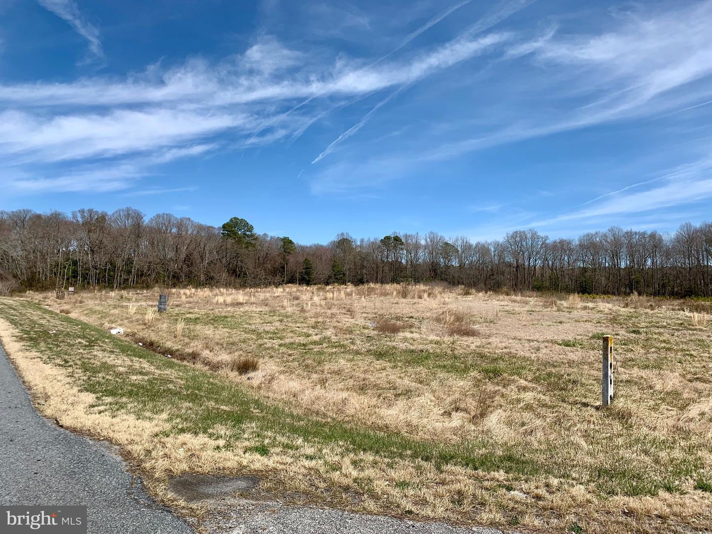 Land for Sale at Fruitland, Maryland 21826 United States