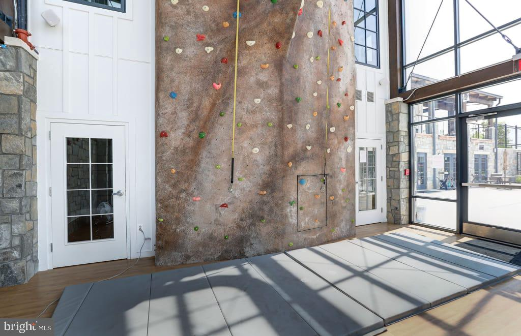 Climbing Wall - 428 SALK CIRCLE, GAITHERSBURG