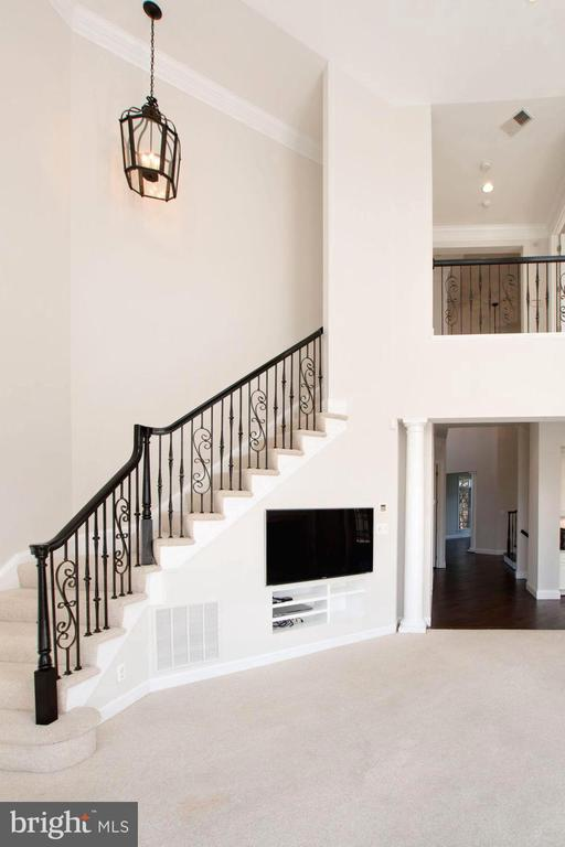 Gorgeous railing and overlook! - 43263 PARKERS RIDGE DR, LEESBURG