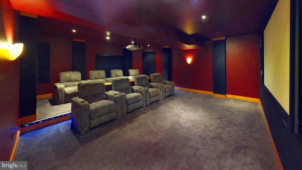 The place to be seen and see....movies! - 43263 PARKERS RIDGE DR, LEESBURG
