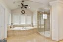 Amazing Soaking Tub and Walk In Shower - 3509 SCHUERMAN HOUSE DR, FAIRFAX