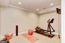 Lower Level View 5. Great Room for Working Out - 3509 SCHUERMAN HOUSE DR, FAIRFAX