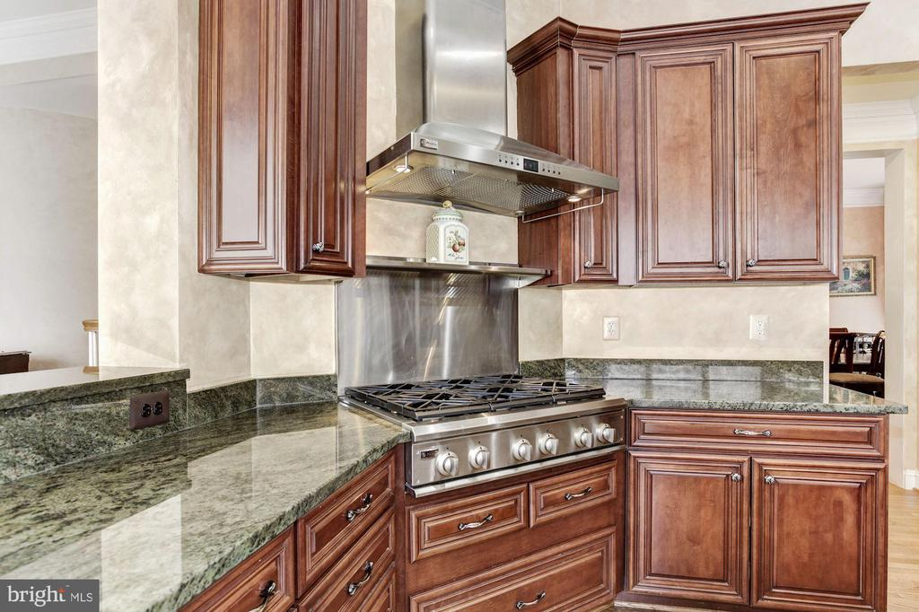 Amazing Kitchen with Six Burner Gas Stove - 3509 SCHUERMAN HOUSE DR, FAIRFAX