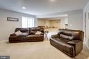 Walkout lower level has lounge - 10283 SPRING IRIS DR, BRISTOW