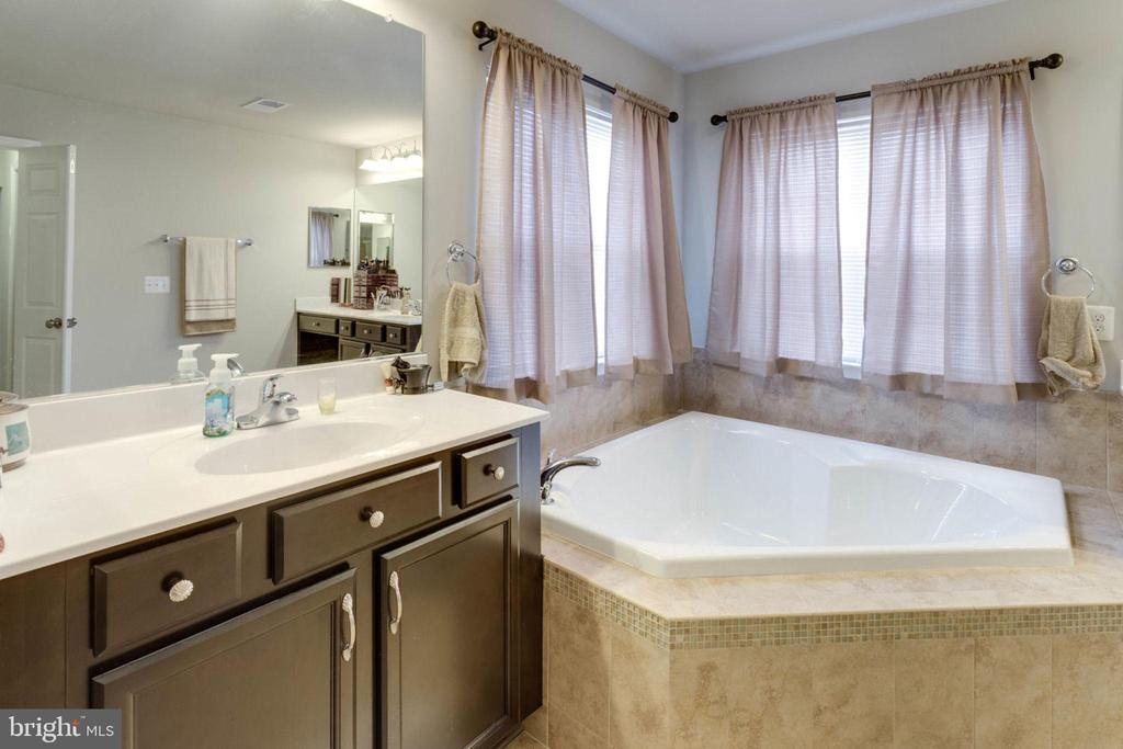 Master bath left - 10283 SPRING IRIS DR, BRISTOW
