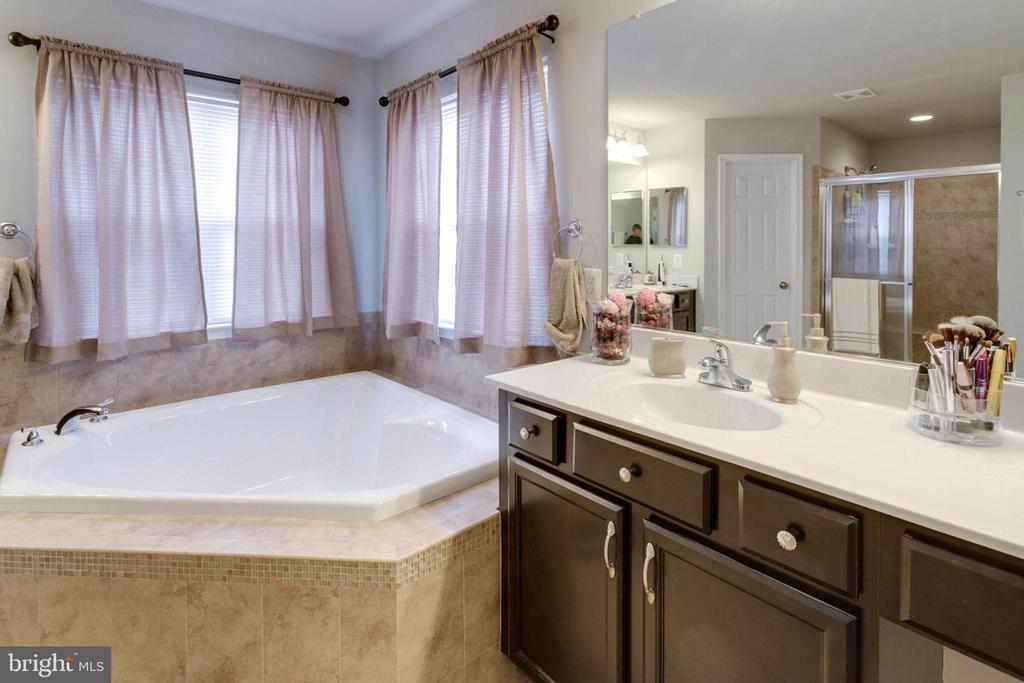 Master bath right - 10283 SPRING IRIS DR, BRISTOW