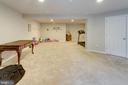 Recreation room with room to work out - 10283 SPRING IRIS DR, BRISTOW