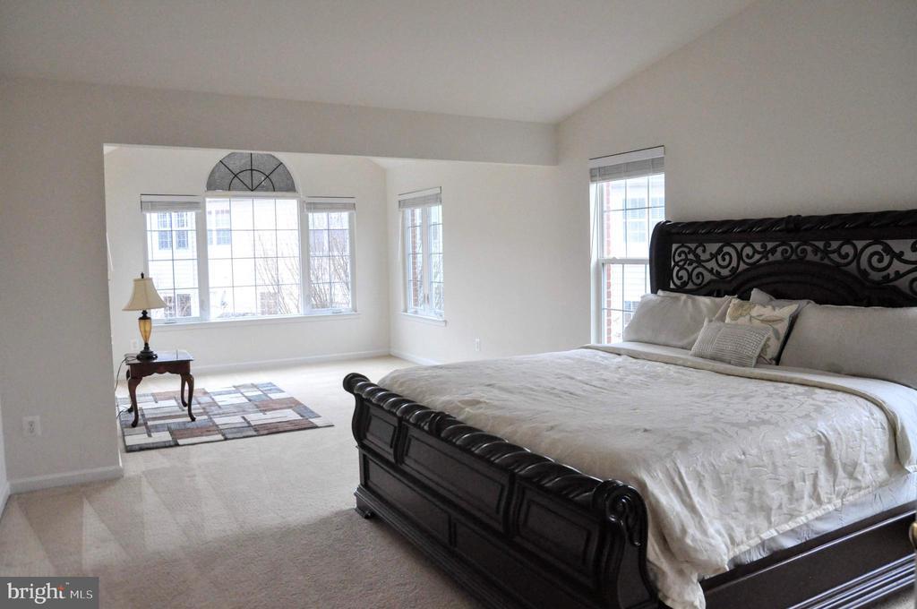 Master bedroom with sitting room - 20079 NORTHVILLE HILLS TER, ASHBURN