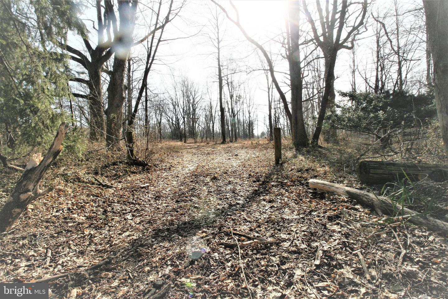 Land for Sale at L:7.01 & L:7.02 SEARCH Avenue, Pennington, New Jersey 08534 United States