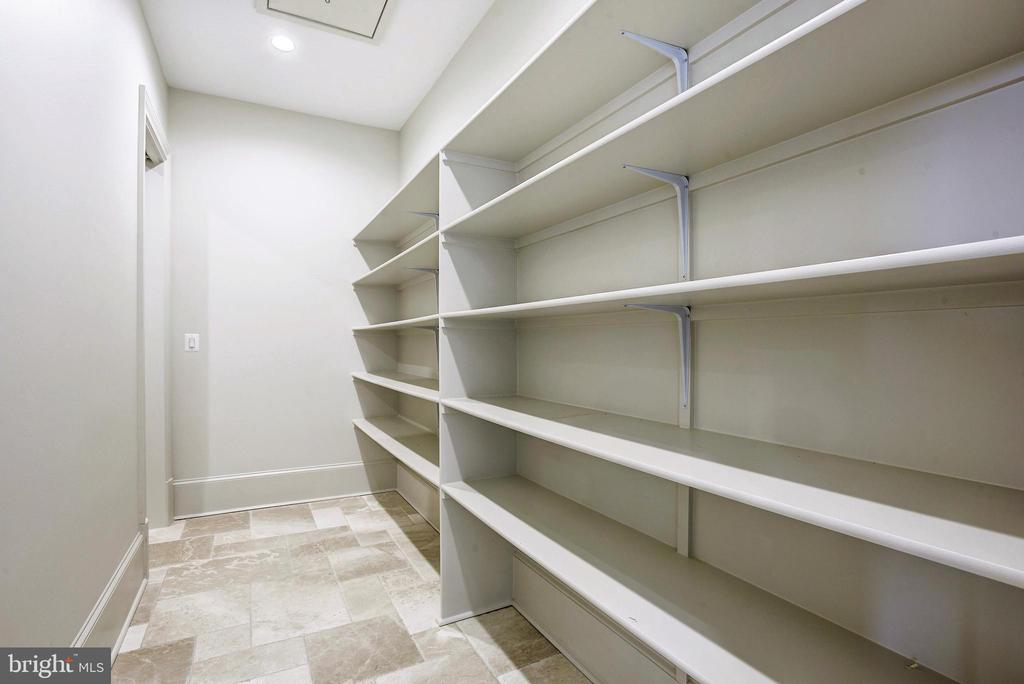 Massive pantry with additional storage room behind - 22501 CREIGHTON FARMS DR, LEESBURG
