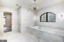 Luxurious bath - 22501 CREIGHTON FARMS DR, LEESBURG