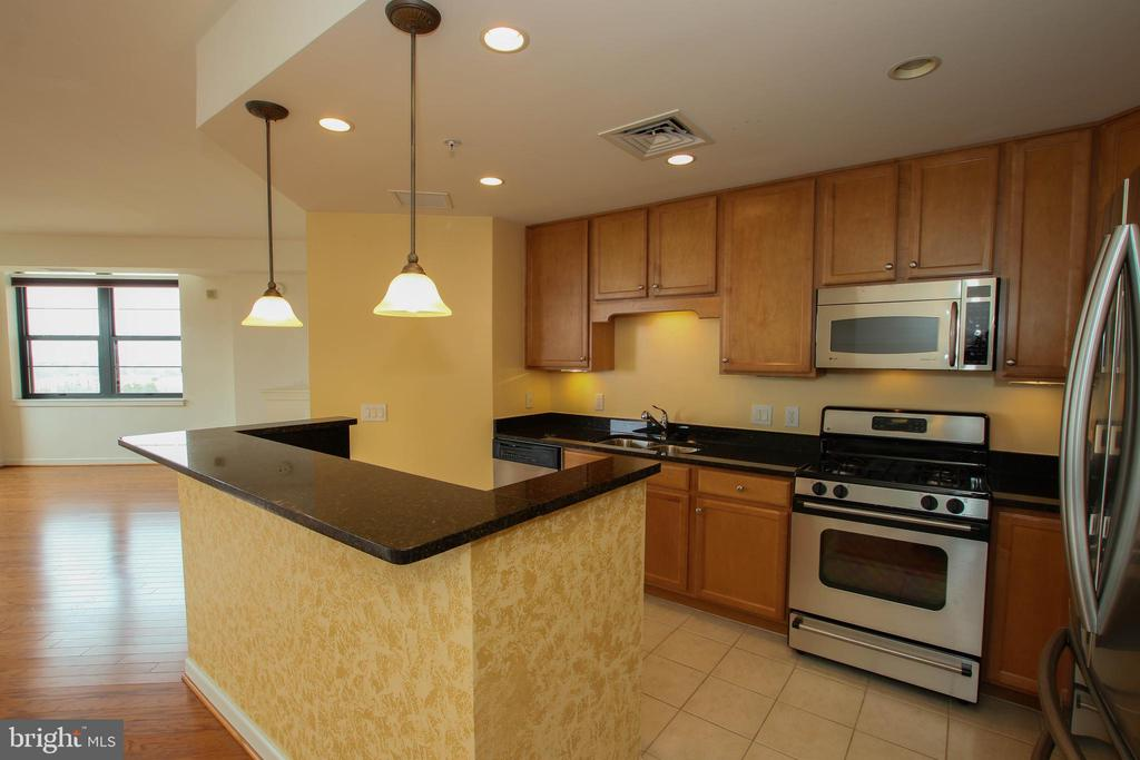 Fully equipped gourmet kitchen with SS appliances - 1830 FOUNTAIN DR #1001, RESTON