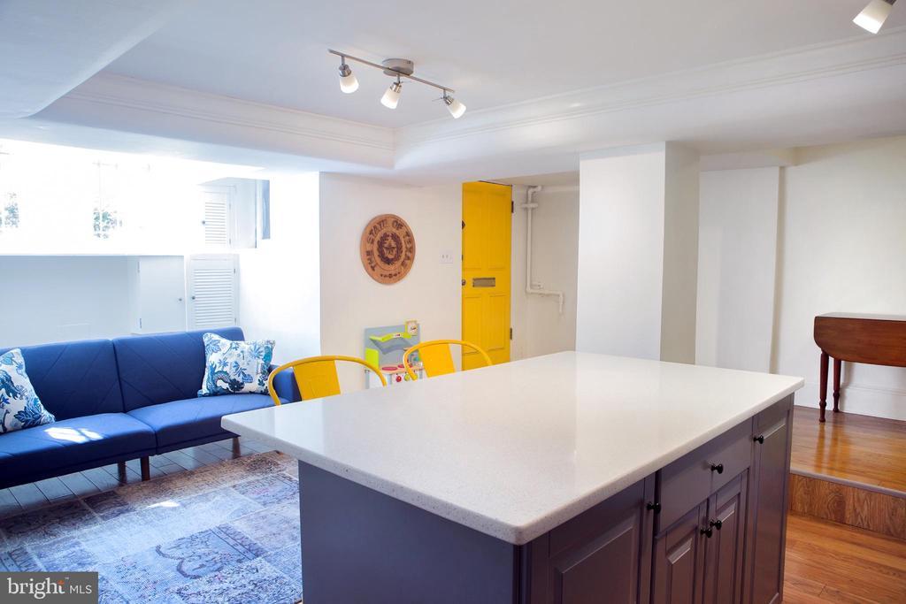In-Law Suite Living Area Northwest - 14 4TH ST SE, WASHINGTON