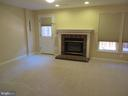 LOWER LEVEL REC ROOM WITH GAS FIREPLACE - 6534 PARISH GLEBE LN, ALEXANDRIA