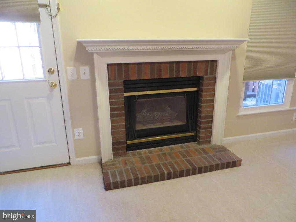 WALK-OUT BASEMENT FROM REC ROOM TO PRIVATE REAR YA - 6534 PARISH GLEBE LN, ALEXANDRIA