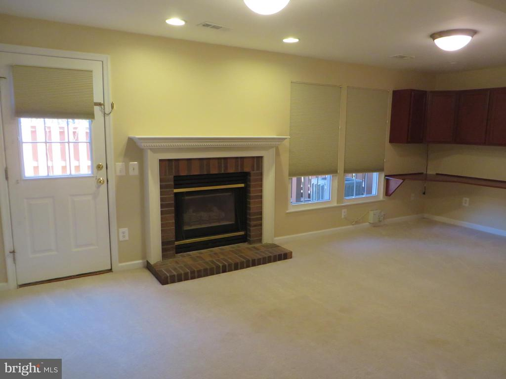 GAS FIREPLACE IN REC ROOM - 6534 PARISH GLEBE LN, ALEXANDRIA