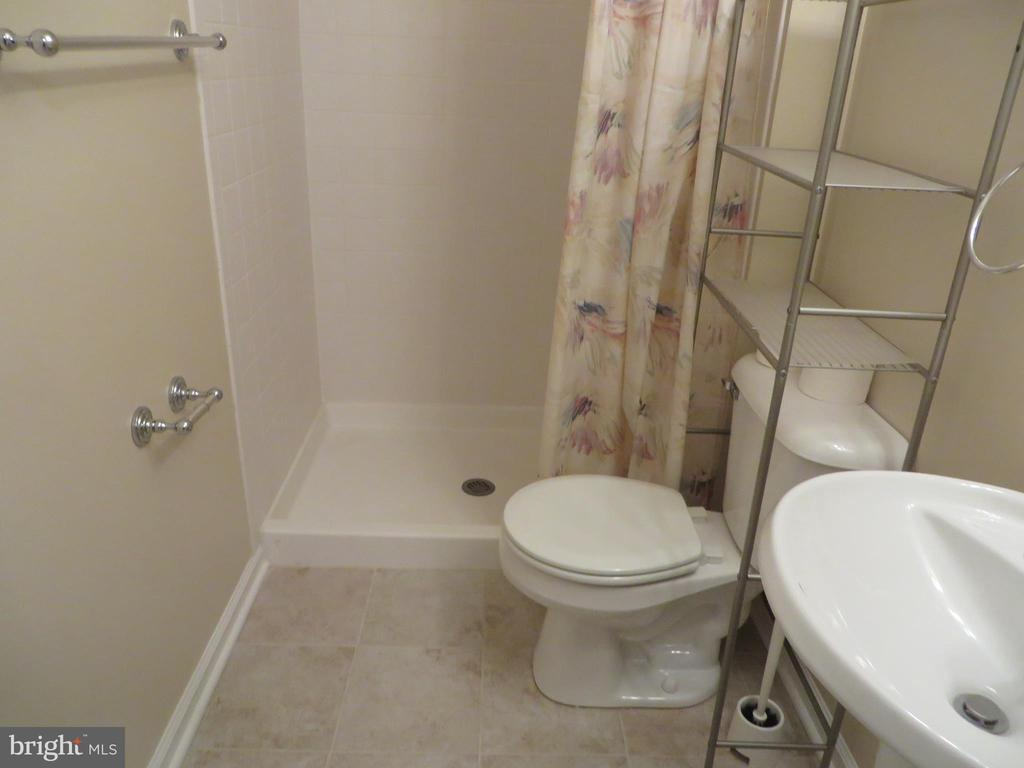 FULL BATH ON LOWER LEVEL - 6534 PARISH GLEBE LN, ALEXANDRIA