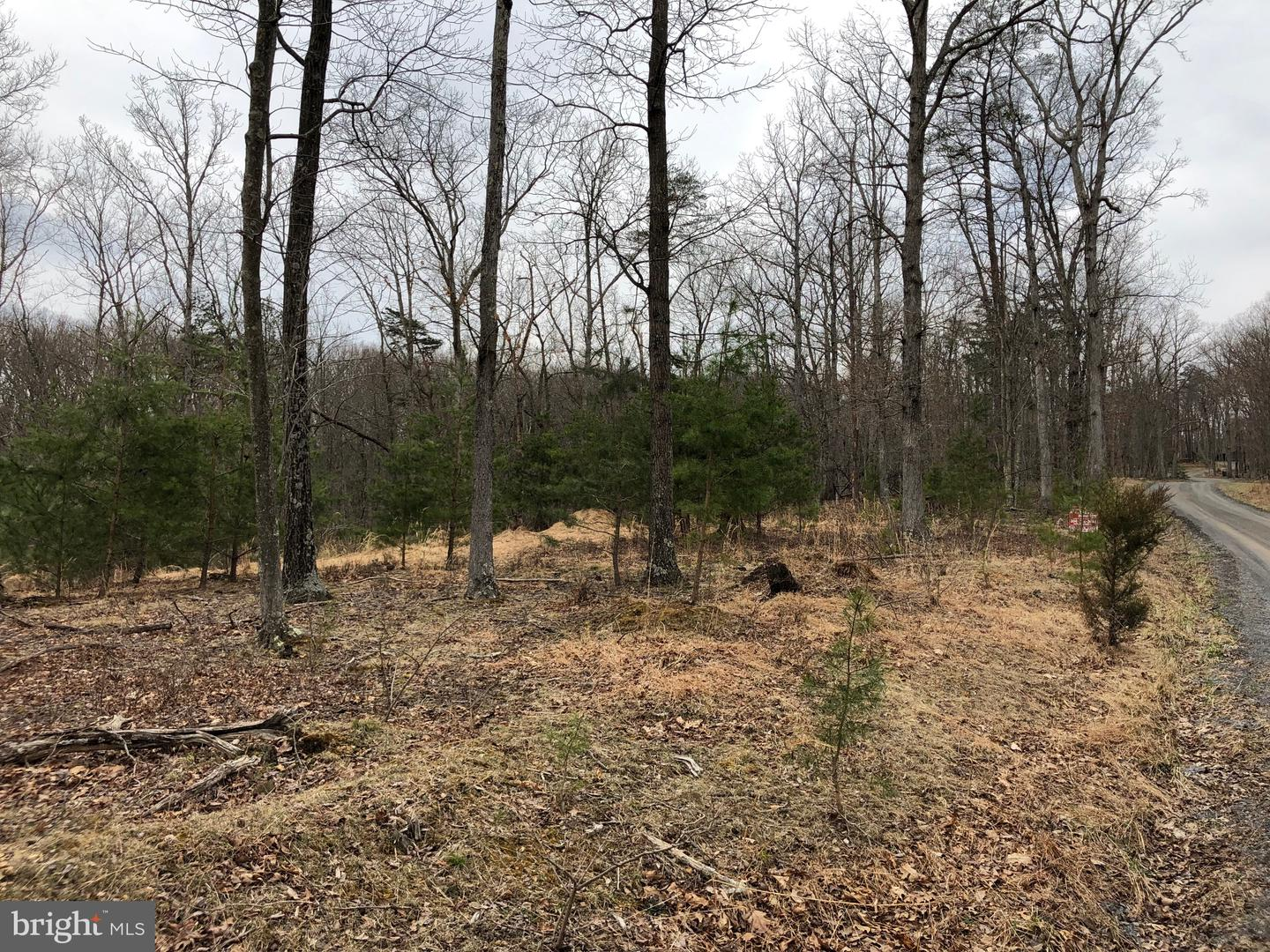 Land for Sale at Colonial Dr Berkeley Springs, West Virginia 25411 United States