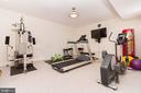 Lower has gym & flat screen TV - new lighting - 17160 SPRING CREEK LN, LEESBURG