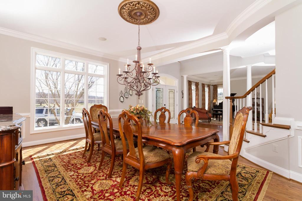 Formal dining room for family, holidays, guests - 17160 SPRING CREEK LN, LEESBURG