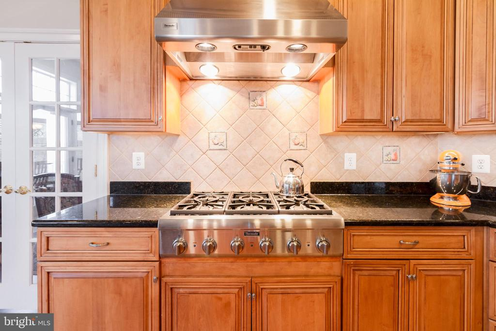 Gas cooking and high-end cook-top with hood - 17160 SPRING CREEK LN, LEESBURG