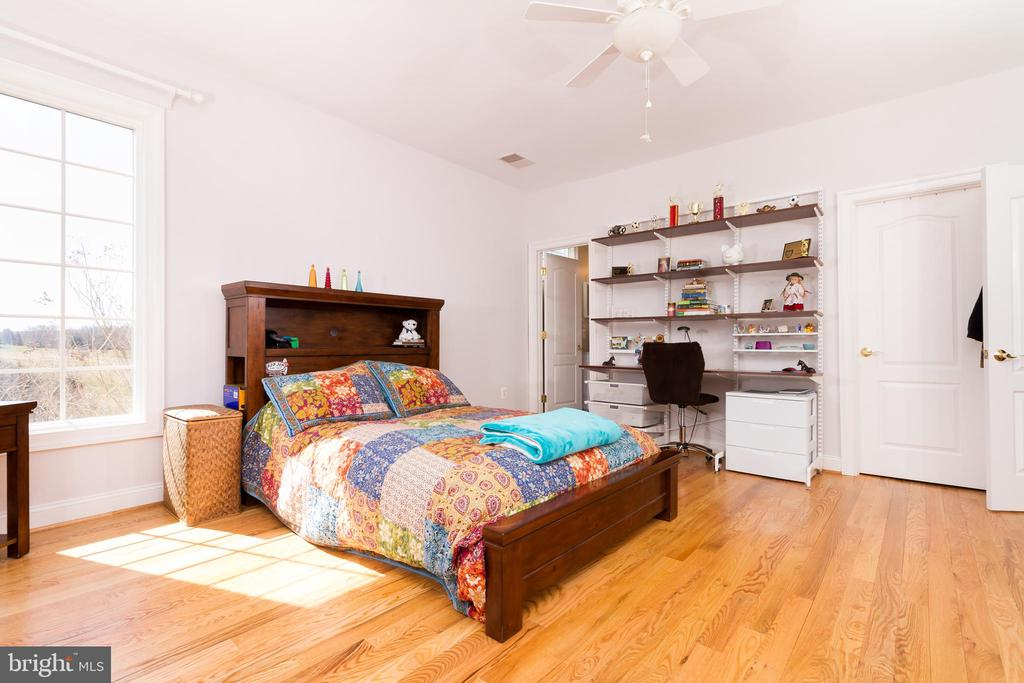 Another view of 2nd bedroom - 17160 SPRING CREEK LN, LEESBURG