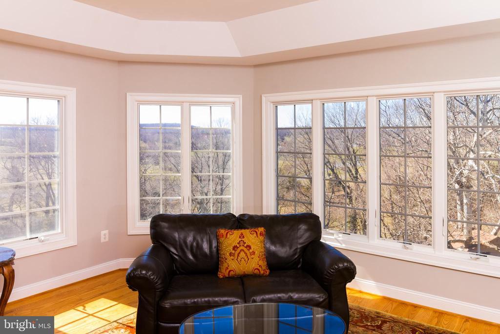 Views from sitting room in Owner's Suite - 17160 SPRING CREEK LN, LEESBURG