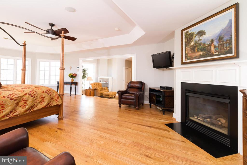 Another view of Owner's Suite - 17160 SPRING CREEK LN, LEESBURG