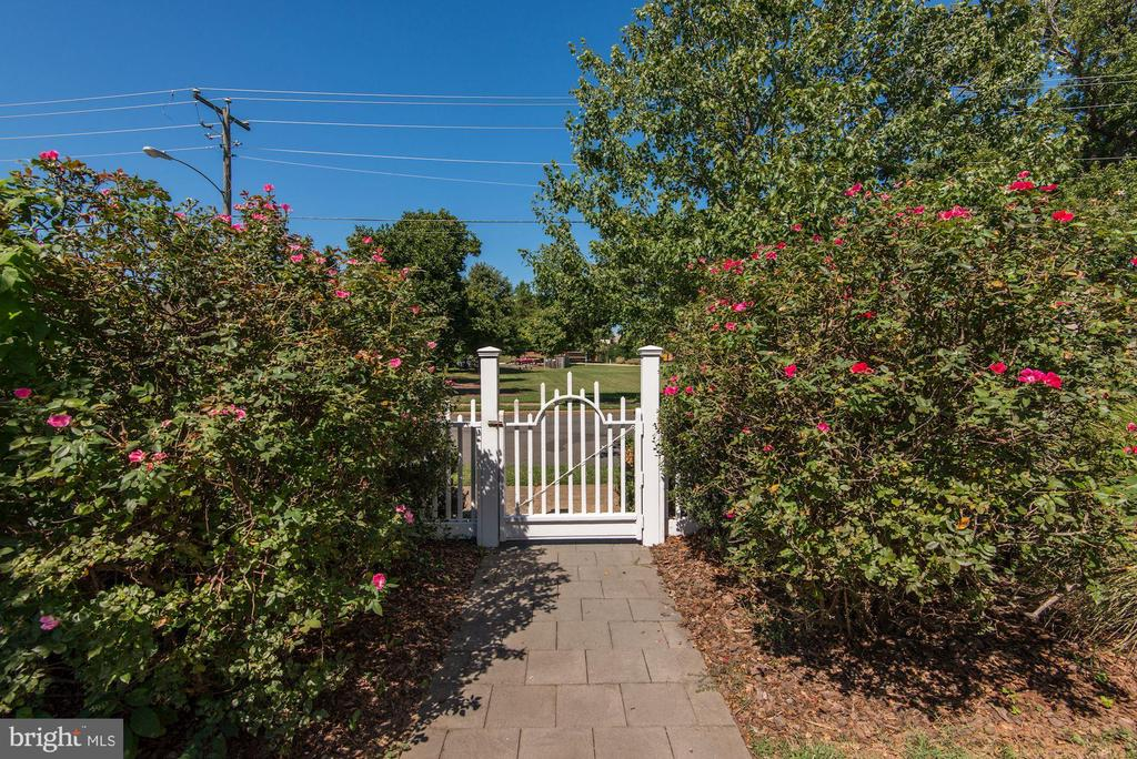 Side Entrance through the Roses. - 2010 FALL HILL AVE, FREDERICKSBURG