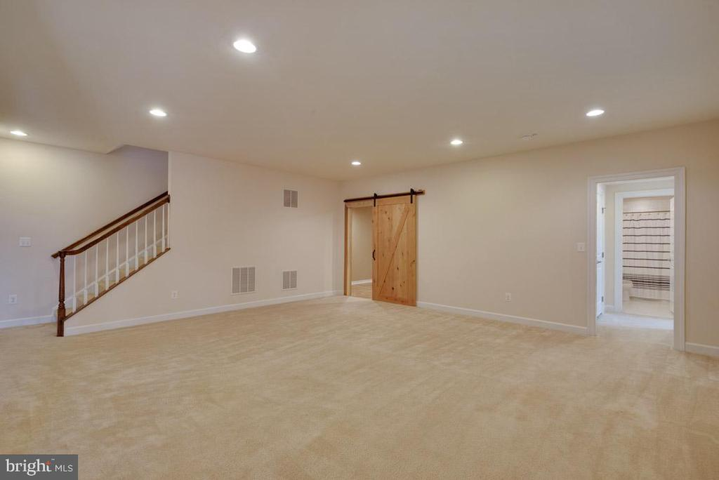 Large Basement with Media Room - 25532 EMERSON OAKS DR, ALDIE