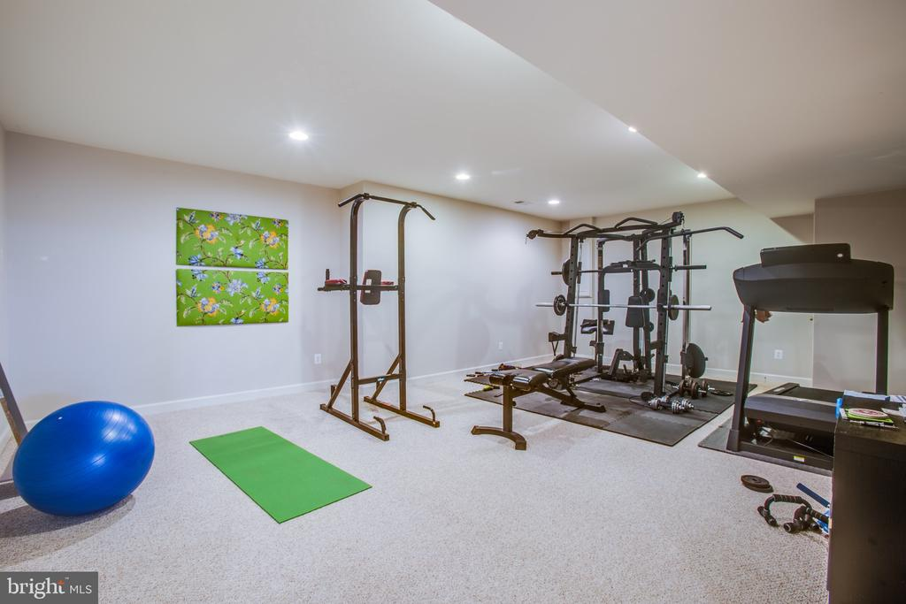Large exercise room accessed through french doors - 5916 DEEP CREEK DR, FREDERICKSBURG