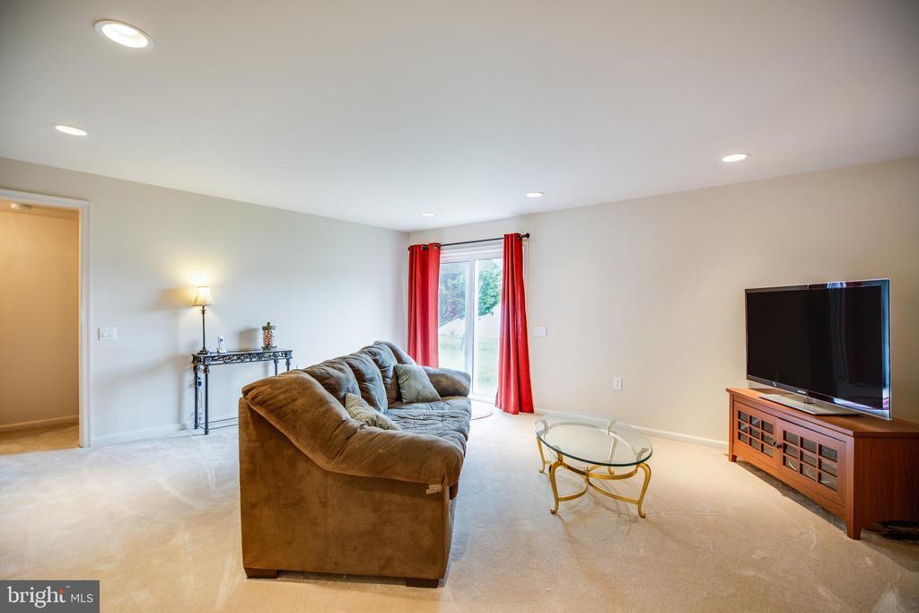 LL Family room - 25 BUCHANAN CT, FREDERICKSBURG