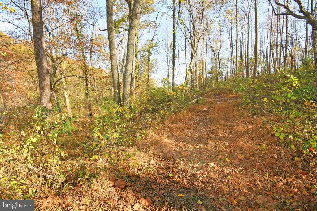 Walking Trail - 8187 PETERS RD, FREDERICK