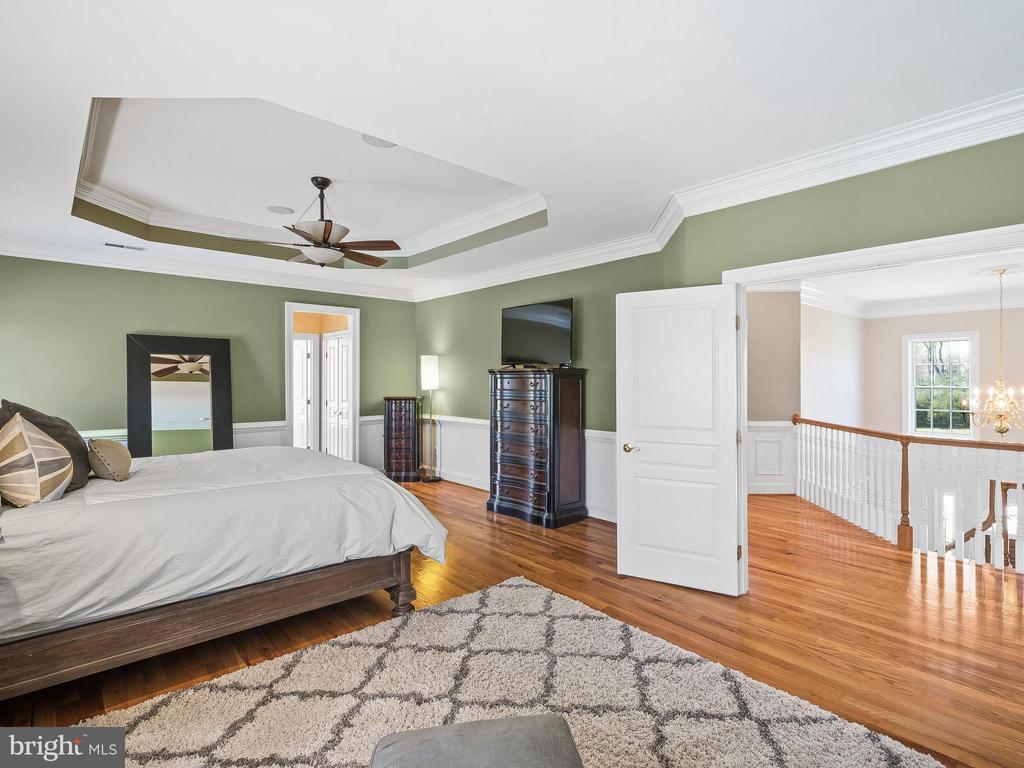 Huge Master Bedroom - 5203 ROSALIE RIDGE DR, CENTREVILLE