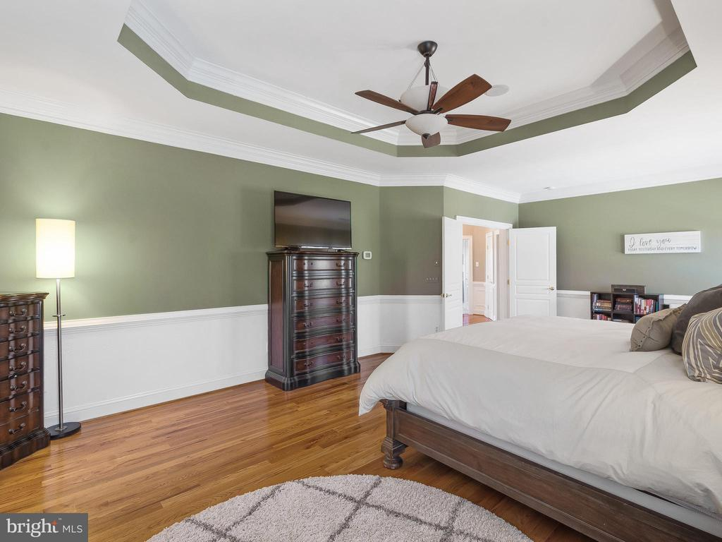 Master Bedroom with tray ceiling - 5203 ROSALIE RIDGE DR, CENTREVILLE