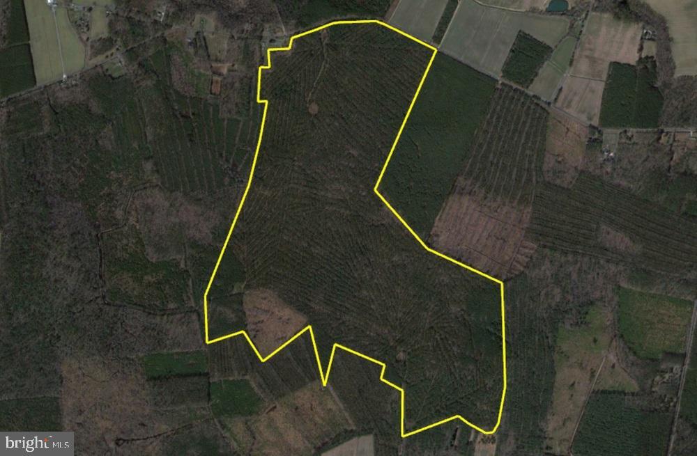 土地,用地 为 销售 在 Princess Anne, 马里兰州 21853 美国