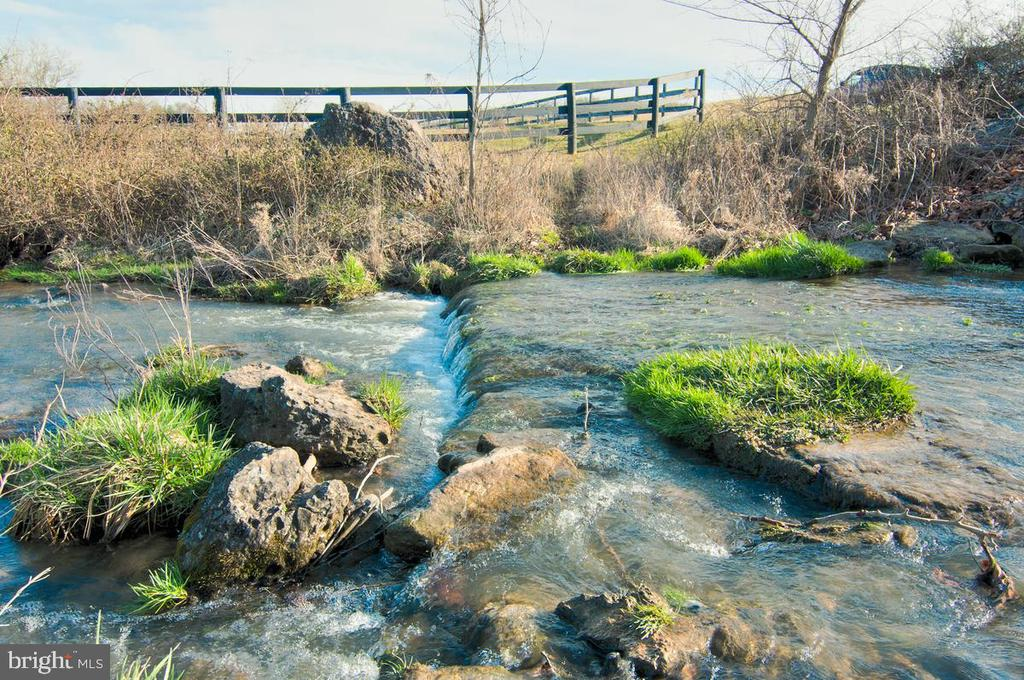 Trout Stream runs along path AND on property - 17160 SPRING CREEK LN, LEESBURG