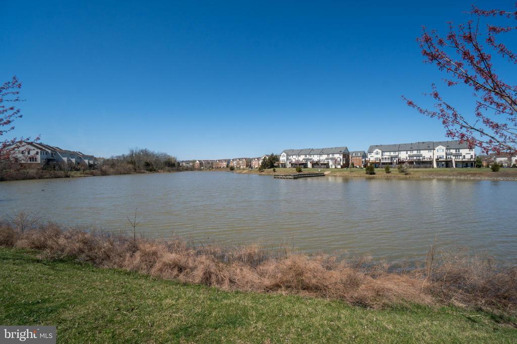 Waterfront/Pond/Front view - 42766 LONGWORTH TER, CHANTILLY