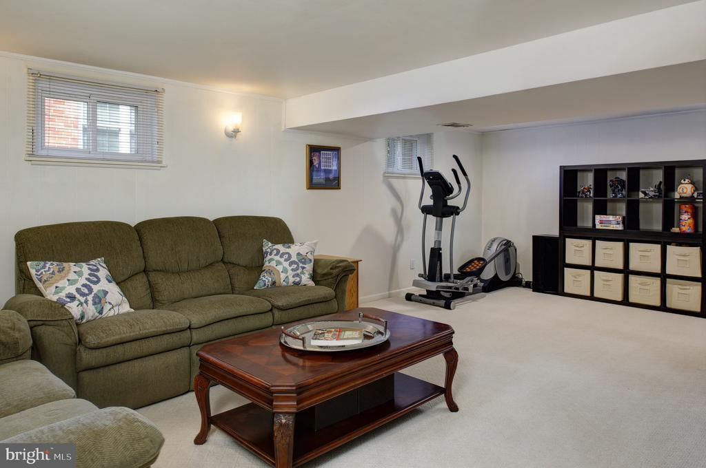 Lower level with space for anything! - 4651 STRATHBLANE PL, ALEXANDRIA