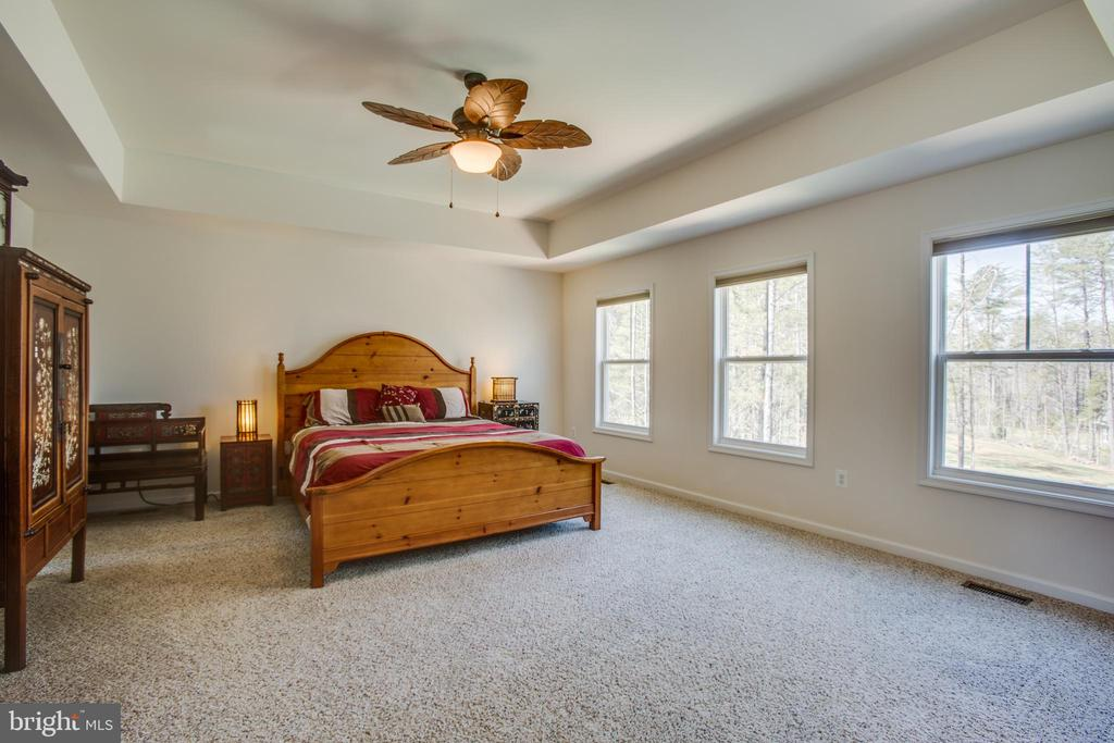 Beautiful tray ceiling and tons of natural light - 512 RICHARDS FERRY RD, FREDERICKSBURG