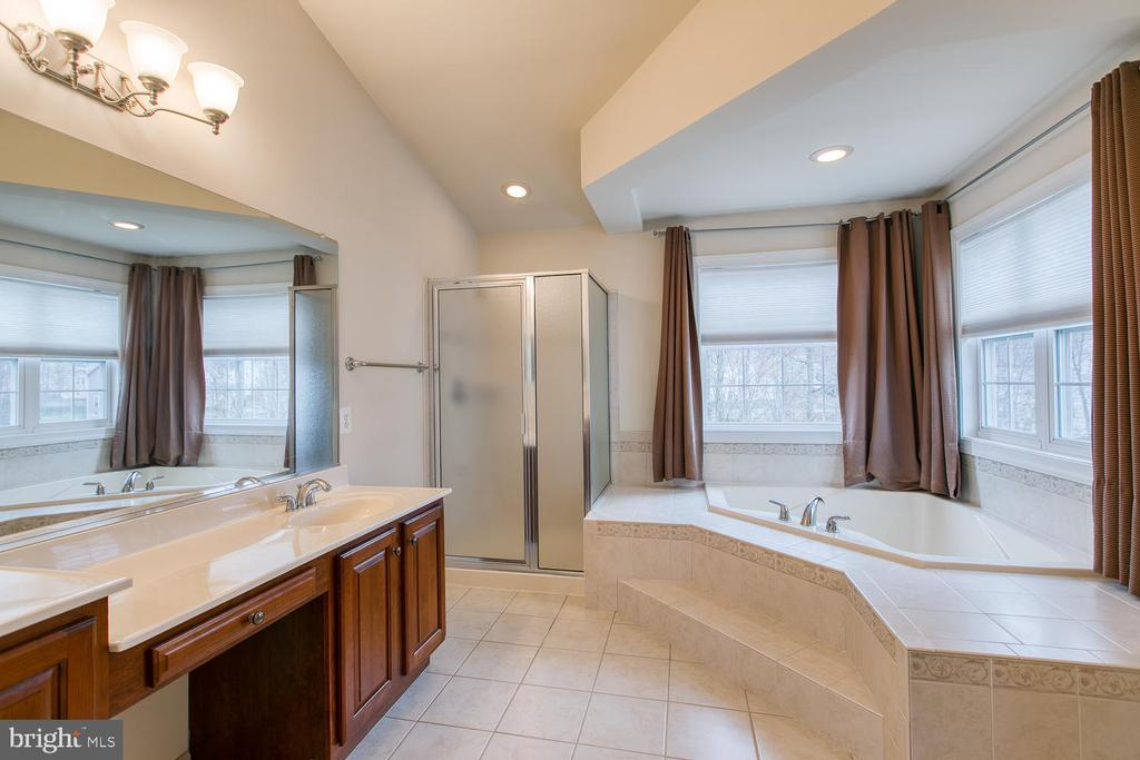 Master bath with separate shower - 6 NOAHS CT, STAFFORD