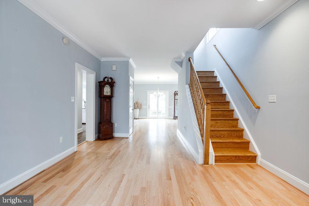 Living Room - 3514 7TH ST N, ARLINGTON