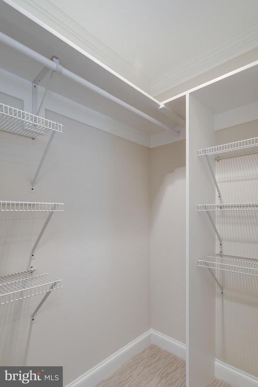 Dual Walk in Closets Adjoin Master Bath - 3216 N ABINGDON ST, ARLINGTON