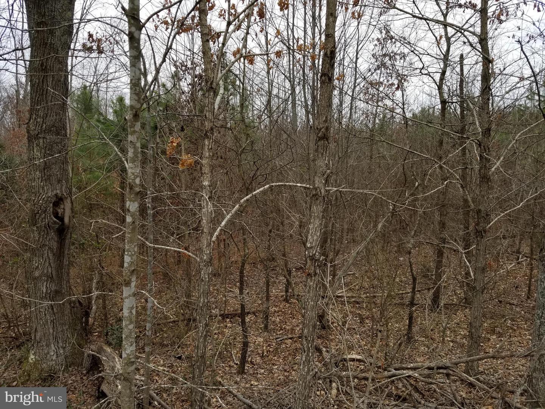 Land for Sale at Caret, Virginia 22436 United States