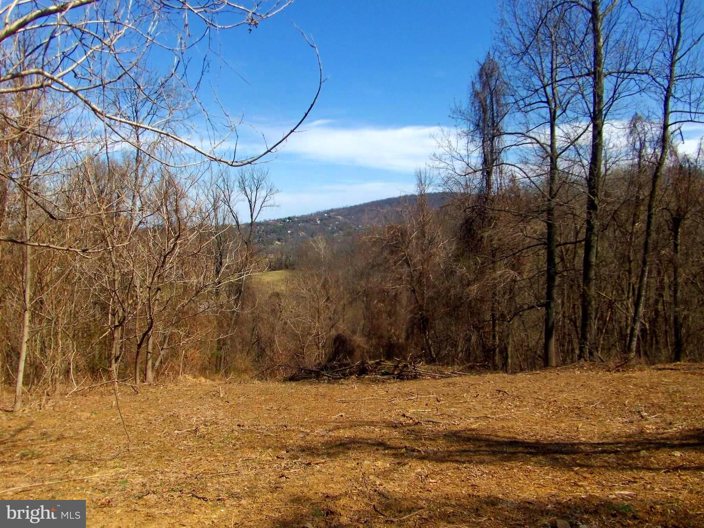 Land for Sale at Wapping Farm Rd Front Royal, Virginia 22630 United States